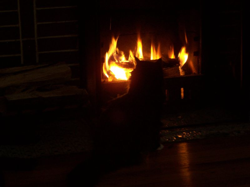 Fireside1