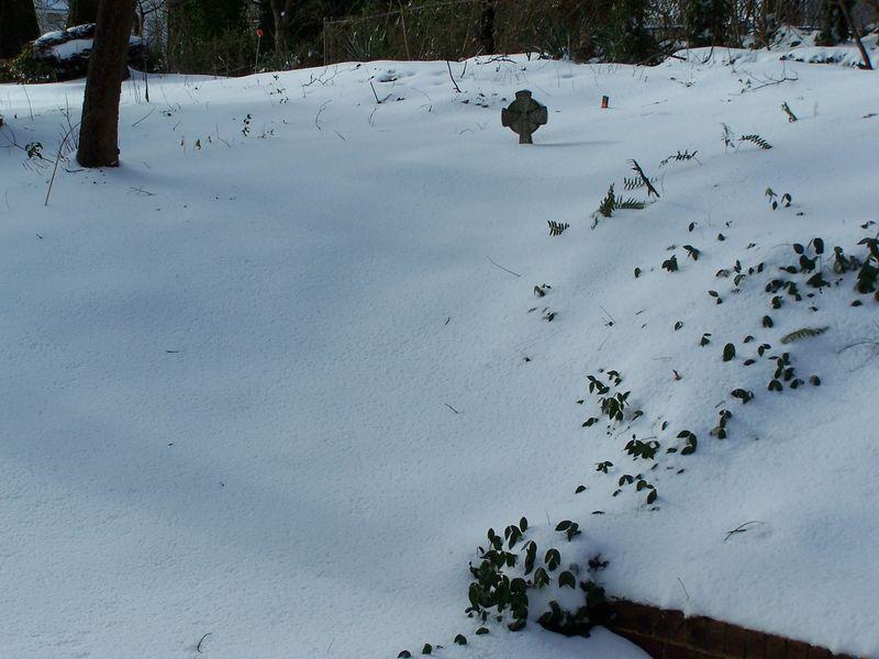 X-mass snow3