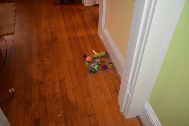 Misc 12-19 floor drop and cat toys 010