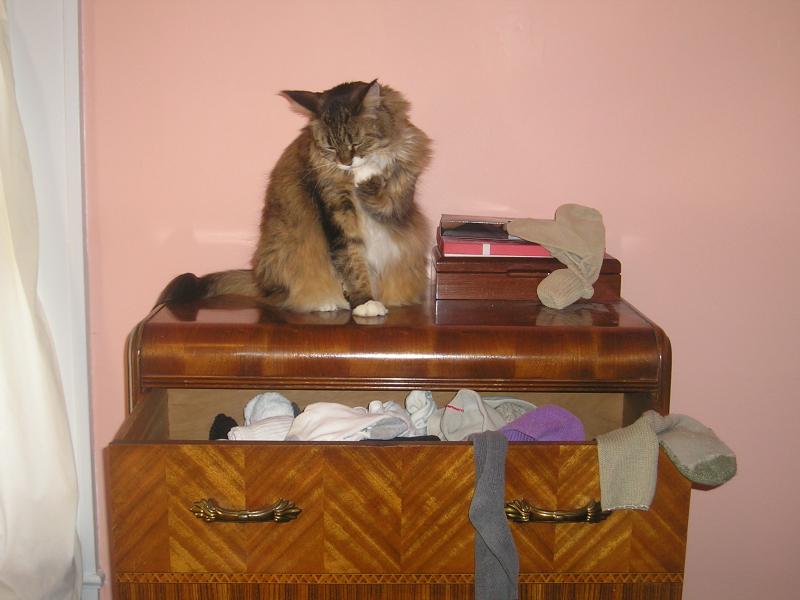 Dresser9