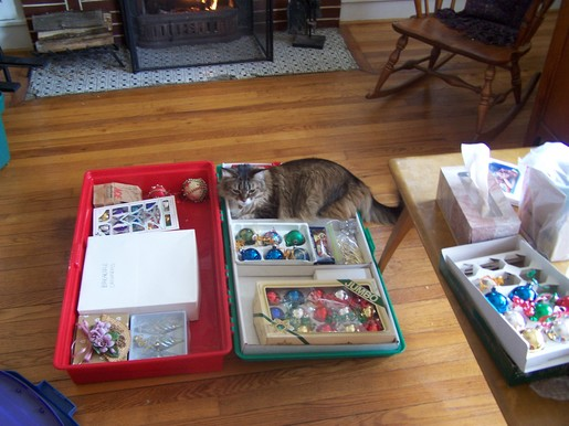 Maddie_in_ornament_box1